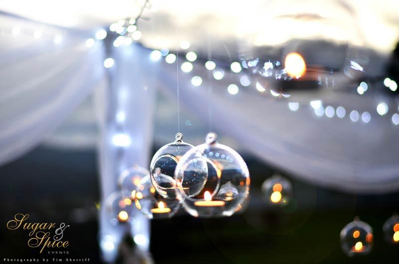 Terrarium for Wedding Amazoncom
