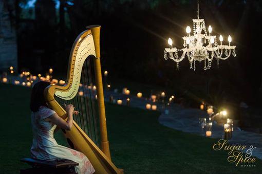 Luxe Wedding Proposal